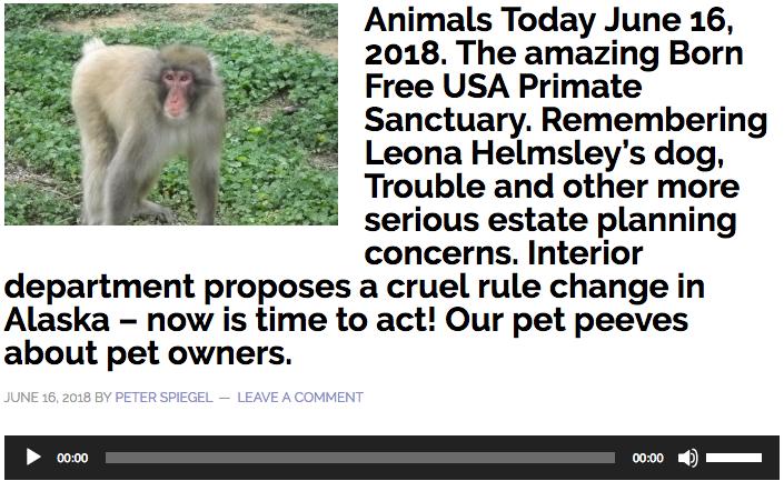 The Amazing Born Free USA Primate Sanctuary